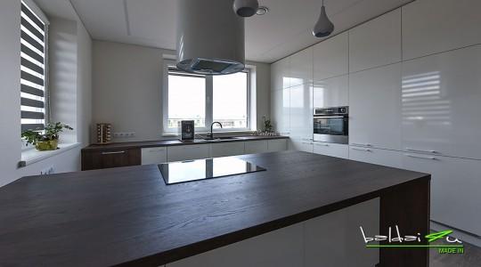 Modernus-virtuves-baldai