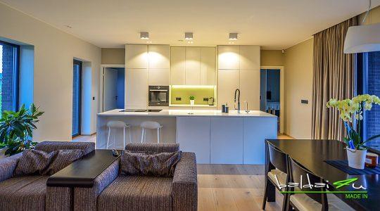 dazyti virtuves baldai, modernus virtuves baldai, baldu gamyba, virtuves baldai